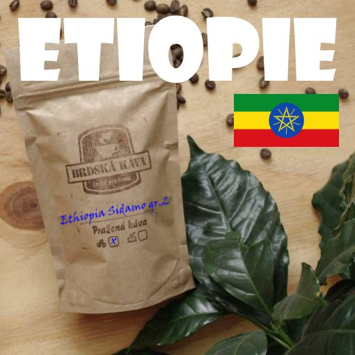 Brdská káva - Etiopia Sidamo gr.2